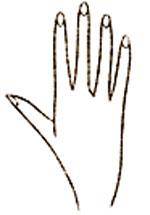فال و طالع بینی,کف بینی,فال,فال دست,فال کف دست,کف بینی,فال کف دست بینی,آموزش گرفتن فال دست,انواع دست,انواع مدل های دست,فال دست بینی,فالگیری با دست,آموزش گرفتن فال با مشاهده دست