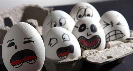 عکس های جالب و دیدنی از تخم مرغ 1395,عکس های جالب تخم مرغ95,عکس های دیدنی از تخم مرغ95