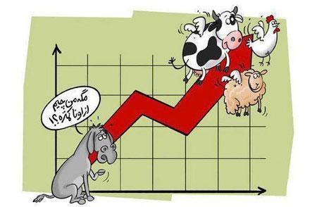 کاریکاتورهای مفهومی, کاریکاتور افزایش قیمت کالا