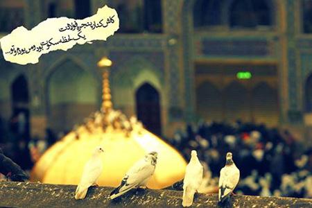 جملکس های ولادت امام رضا , متن تبریک میلاد امام رضا