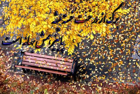 متن های زیبا درباره پاییز, جملکس های عاشقانه