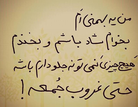 شخصیت شناسی ماه های تولد, متولدین بهمن