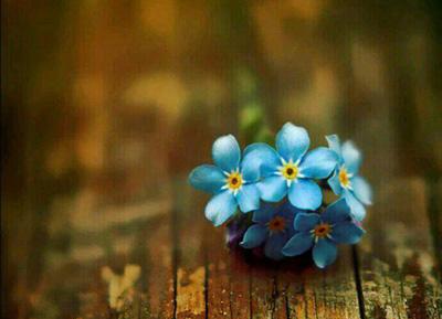 زندگی زیباست, مطالب آموزنده درباره زندگی