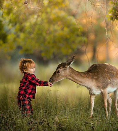 زندگی زیباست, جملات الهام بخش و زیبا