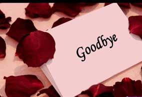 اس ام اس خداحافظی - 2