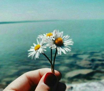 متن زیبا کوتاه , متن زیبا در مورد زندگی