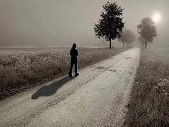 داستان آموزنده درخت و مسافر,داستان آموزنده,داستان کوتاه,داستانک