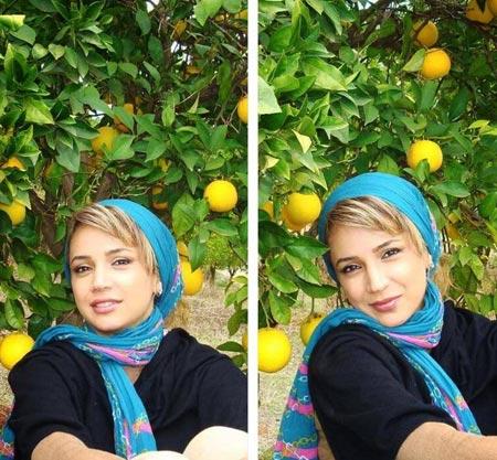 شبنم قلی خانی,عکس  شبنم قلی خانی,تصاویر  شبنم قلی خانی