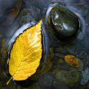 داستان سنگ یا برگ,داستانهای آموزنده,