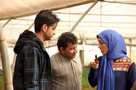 سریال نوروزی مرز خوشبختی,داستان سریال  مرز خوشبختی