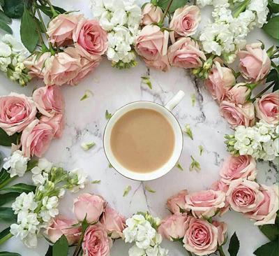 نکات زيبا براي زندگي زيبا, جملات زندگي زيبا