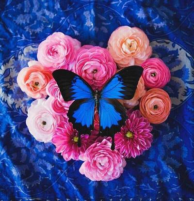 نکاتي براي زندگي زيبا, جملات کوتاه موفقيت و زندگي زيبا