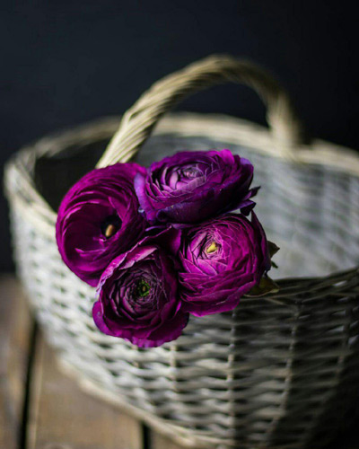 جملات کوتاه موفقیت و زندگی زیبا, نکات زیبا برای زندگی زیبا