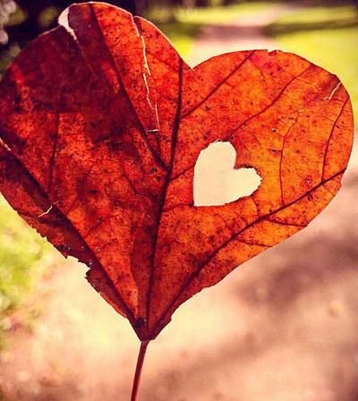 جمله های آرامش بخش برای داشتن زندگی زیبا, تصاویر زندگی زیبا