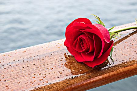متن سالگرد ازدواج به همسر, جملات تبریک سالگرد ازدواج به همسر