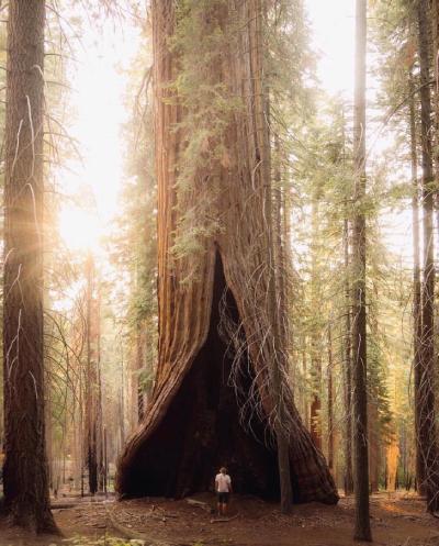 عکس های زیبای طبیعت جهان, عکس های طبیعت