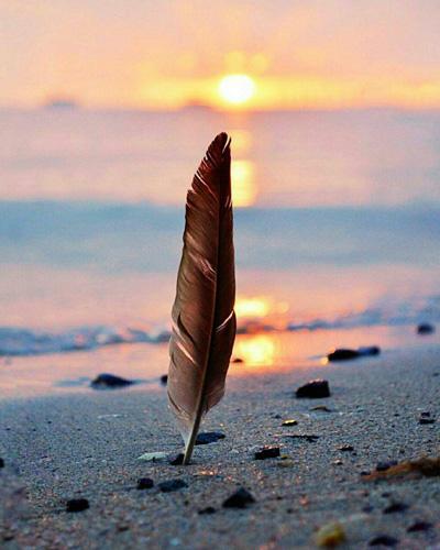 جملات کوتاه موفقیت و زندگی زیبا, جمله های آرامش بخش برای داشتن زندگی زیبا