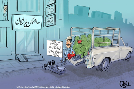 کاریکاتور گرانی، کاریکاتور های سیاسی