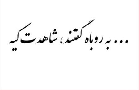 ضرب المثل ,ضرب المثل ایرانی,ضرب المثل به روباه گفتند شاهدت كيه