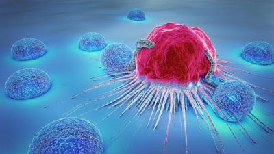 نشانه های سرطان, پیشگیری از سرطان