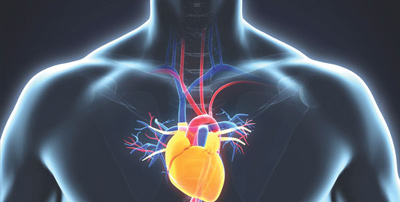 آب آوردن قلب چیست, پیشگیری از آب آوردن قلب