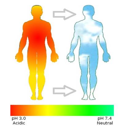 جلوگیری از اسیدی شدن بدن , اسید بدن