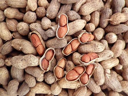 خاصیت بادام زمینی, کالری بادام زمینی