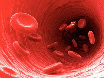 راههای درمان کم خونی, درمان کم خونی با طب سنتی