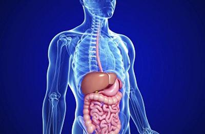 عفونت دستگاه گوارش, غذاهای پر ادویه