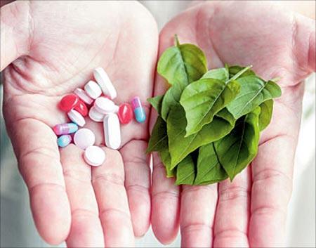 بهترین مسکن های گیاهی,مسکن های گیاهی,جایگزین مسکن های شیمیایی