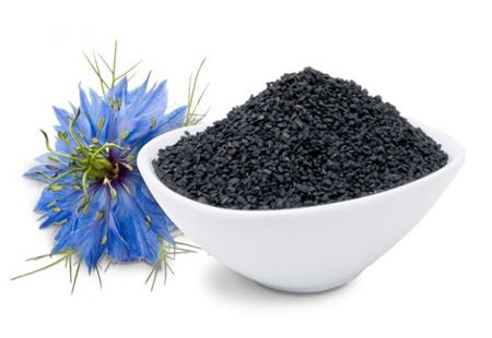 خواص گیاه دارویی سیاهدانه