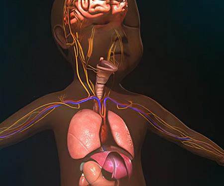 بیماری نیمن پیک: بررسی انواع مختلف نیمن پیک، علائم و درمان