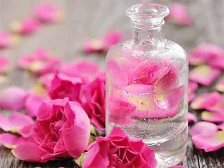 گل محمدي,فوايد دارويي گل محمدي,خواص درماني گل محمدي