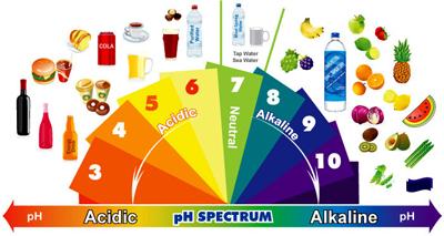 رژيم غذايي قليايي, رژيم غذايي قليايي کدام مواد هستند