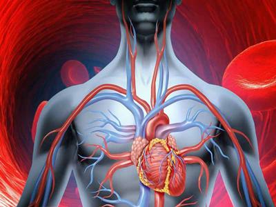 رژيم درماني, ميوه تصفيه خون
