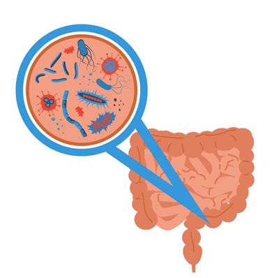 تقویت کننده سیستم ایمنی بدن, تحمل لاکتوز