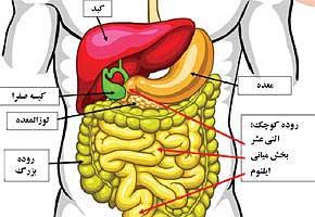دستگاه گوارش, التهاب روده, بيماري كولون