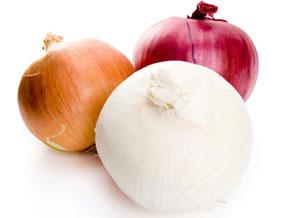 کاهش وزن, پياز موثر در کاهش وزن, رژيم غذايي مناسب