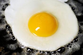 رژیم غذایی, سلامت بدن, زرده تخم مرغ
