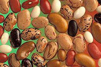 رژیم غذایی, درمان لاغری, افزایش وزن