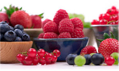 رژیم غذایی, لوبیای سویا, کلسترول خون