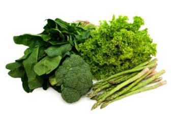 رژيم غذايي, دستگاه ايمني بدن