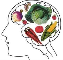 8 غذا که مغز را جوان و سالم نگه میدارد