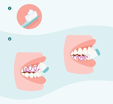 بهداشت: نکاتی پیرامون مسواک و خمیر دندان