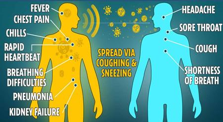 بیماری کرونا|  بیماریهای حجاج