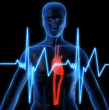 استرس و اضطراب| درمان تپش قلب