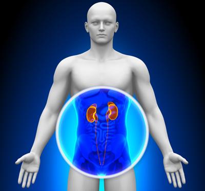 علایم سرطان کلیه, بیماریهای کلیوی