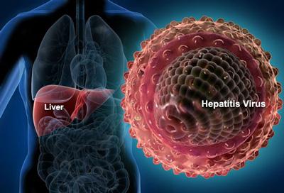 انواع هپاتیت و راههای انتقال, راه انتقال هپاتیت ب