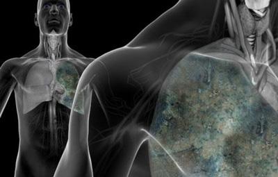 Image result for محافظت از بدن در مقابل هوای آلوده