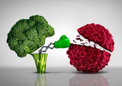 آنتی اکسیدان , میوه در پیشگیری از سرطان